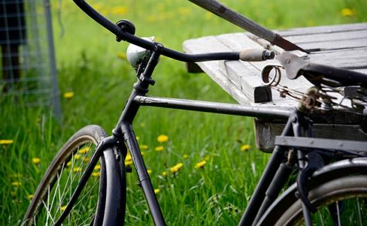 svartcykel